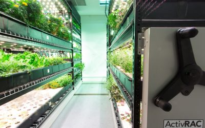 Hydroponic Growing with Vertical Storage